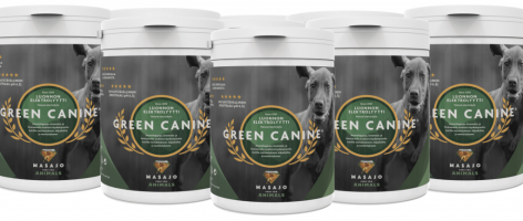Green-Canine